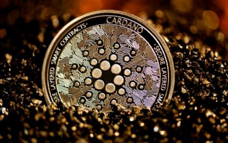 Why The Hydra Layer 2 Solution Is Important To The Cardano Network